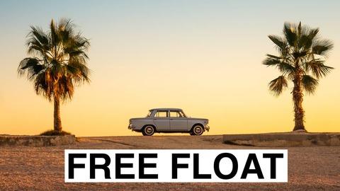 Free-float (фри флоат) акций - что это такое